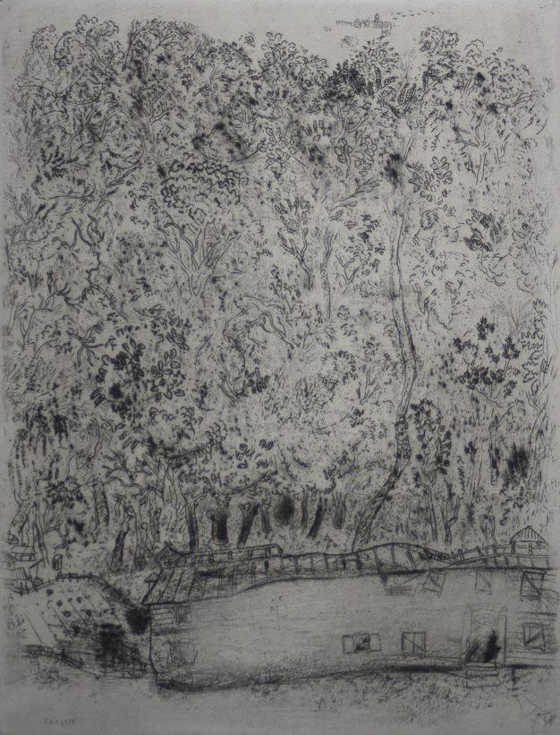 Marc Chagall Gogol Dode Zielen Pljoesjkins oude park 11