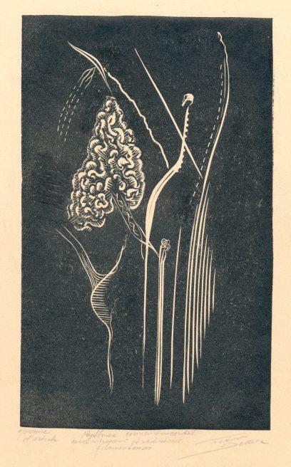 Victor Delhez, Cervicorinocordiaal Rythmus