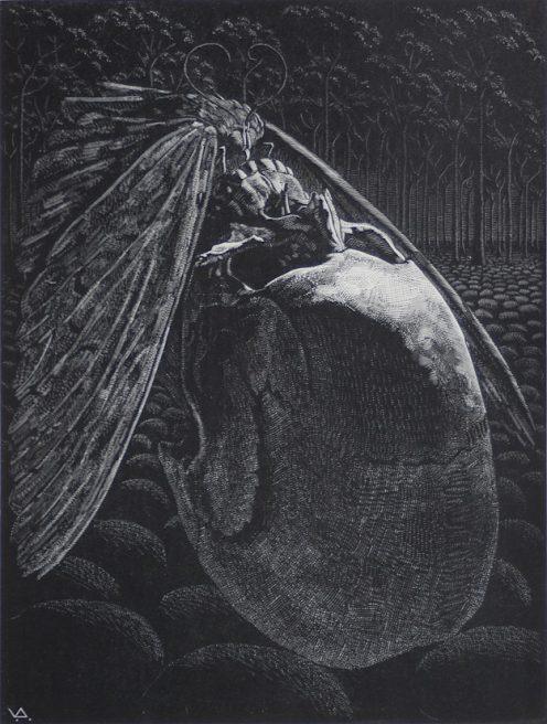Victor Delhez, Dodendans VII (Kus)