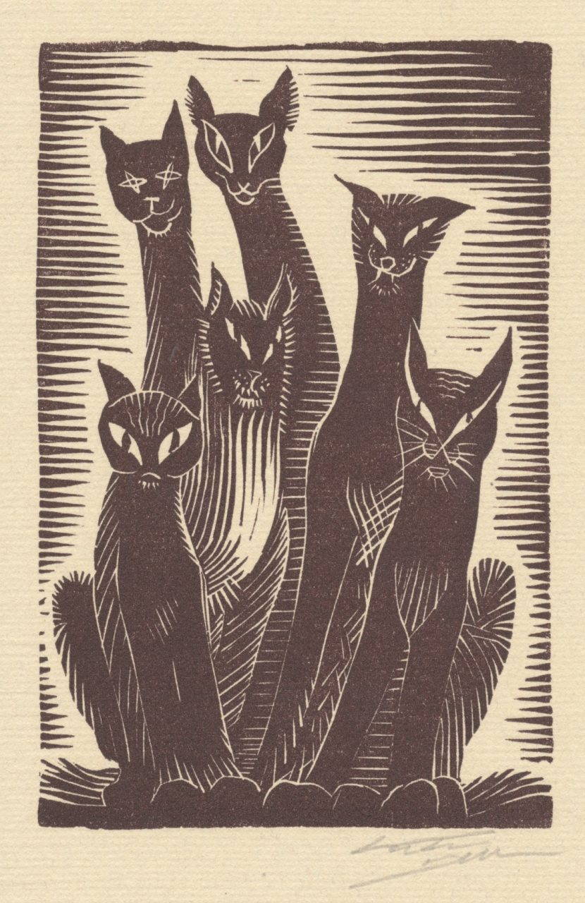 Victor Delhez Katten 02
