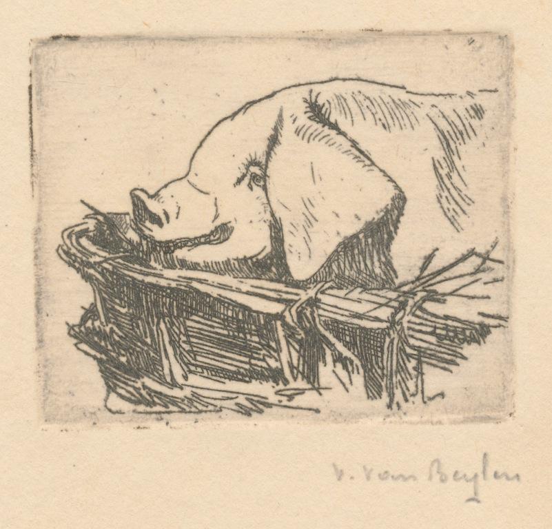Victor Van Beylen 7